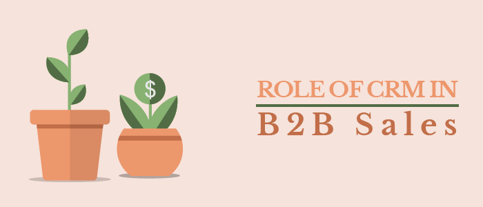 Role of CRM in B2B Sales