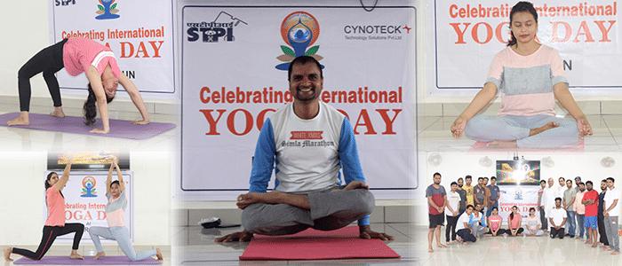 cynoteck_yoga