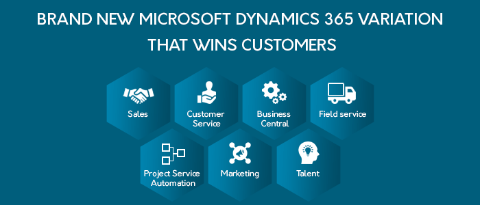 MICROSOFT DYNAMICS 365 VARIATION THAT WINS CUSTOMERS