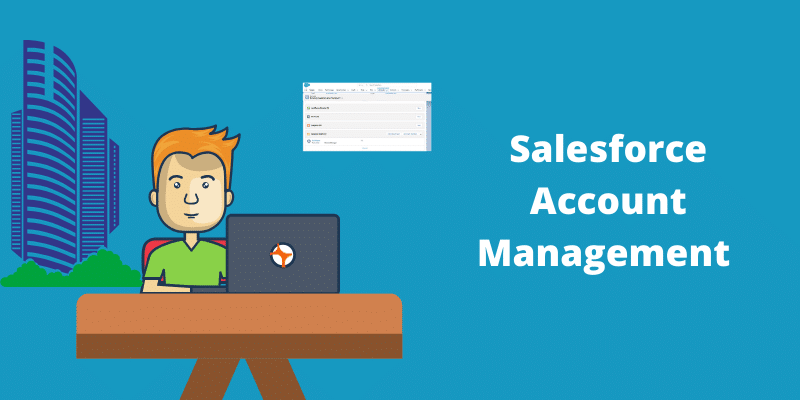 salesforce account Management